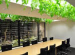 HOW COMPANIES CAN GO GREEN WITH THEIR BUSINESSES